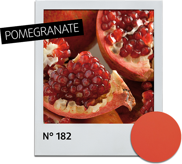 Nail Polish 82 Pomegranate