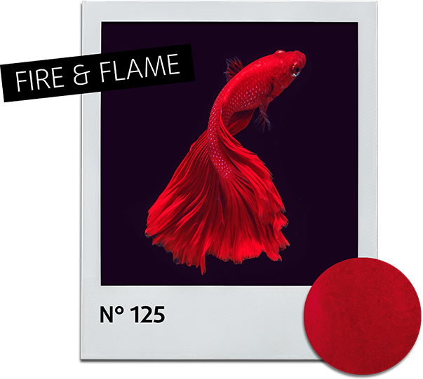 Nail polish 25 Fire and Flame